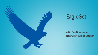 Photo of تحميل برنامج EagleGet بديل IDM